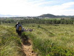 3.-Walking-back-towards-Port-Pollensa.jpg